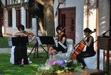 Mousikê a la Carta ೄ Música bodas ALBACETE foto 2