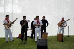 SHOWS DE DANZAS DEL PERU-TELEF