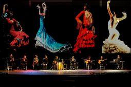 Coro Rociero Flamenco Acebuche
