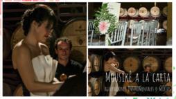 Mousikê a la Carta ೄ Música bodas ALBACETE