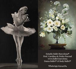 Body Ballet® Iniciación Reciclaje Adultos