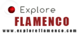 Explore Flamenco: Cultural Sho foto 1