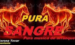 Grupo musical Pura Sangre_0