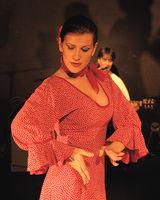 Flamenco y otras músicas