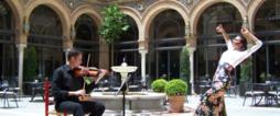 Explore Flamenco: Cultural Sho