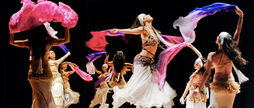 Cia de Danzas Arabes Hanin