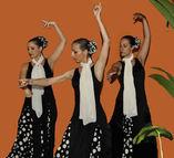 Baile Flamenco foto 2