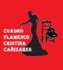 Cuadro Flamenco  Cristina Cañizares