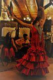 Flamenco Events Málaga  foto 2