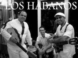 Los Habanos