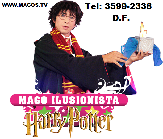 mago ilusionista harry potter 0