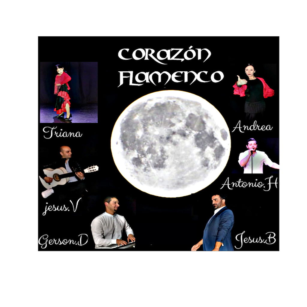 grupo flamenco corazon flamenc 0