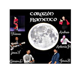 grupo flamenco corazon flamenc