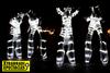 Zancos con LEDS