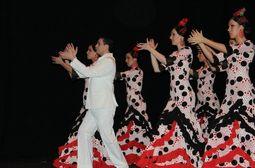 Cuadro Flamenco Zambra