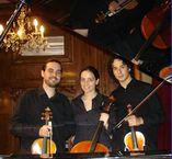 Violinista foto 2