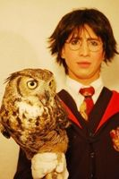 mago HARRY POTTER
