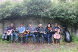 Banda Folk-Irish-country  foto 2