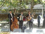 Trio en Guadalajara Los princi_1