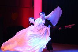 A silky fairytale - poetisch-seidige Tanzakrobatik