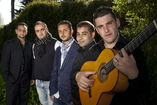 Son de Flamenco foto 1