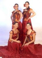 Grupo de baile flamenco español el parral