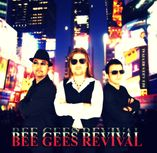 Bee Gees Revival (The Covers, The Acoustic Jam) foto 2