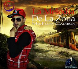 Mr.Flow Gamboa