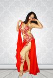 Bailarina danza del vientre y bollywood foto 1