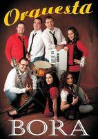 Orquesta Bora