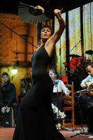 Coro Rociero/Flamenco SAVIA y COMPÁS