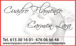 Cuadro Flamenco Murcia
