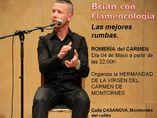 Flamencología foto 1