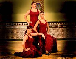 Ballet Flamenco Sol y Luna