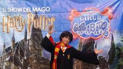 MAGOS: SORPRENDENTE HARRY POTTER