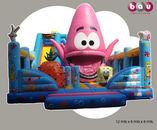 BAU Inflatables foto 1