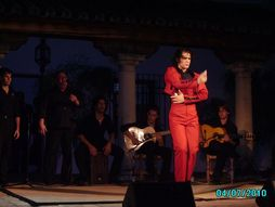 Angel Reyes Baile Flamenco