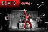 Elvis My Way - Tributo a Elvis foto 2