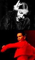 Cursos de flamenco 2010/11