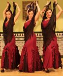 Ballet Flamenco Sol y Luna foto 2