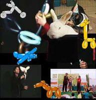 Fiestas Infantiles con magos